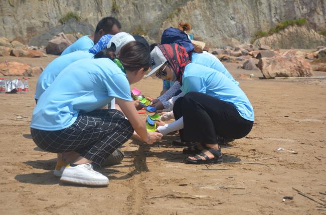 Team Cooperation
